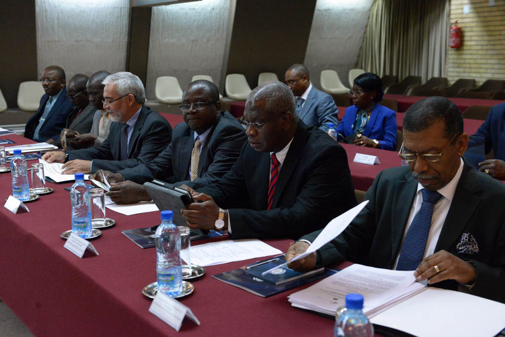 Plenary Session of the Joint Serbian Angolan Committee