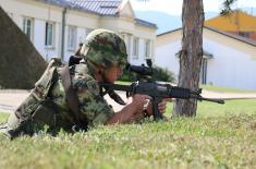 Minister Vulin: The Serbian Armed Forces is an army of peace