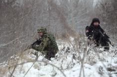 Министар Вулин: Одлична сарадња Војске и МУП на обезбеђењу границе